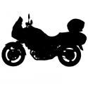 DL650 / V-STROM